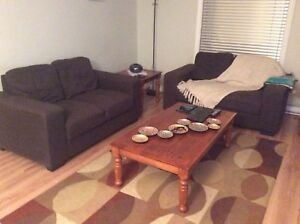 Two loveseat for sale it's good condition
