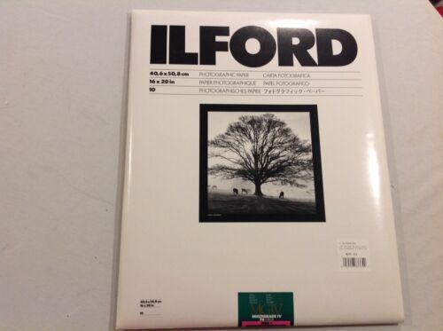 Ilford Photographic Paper 16 x 20 MGIV Multigrade IV FB Fibre MGF.1K Glossy