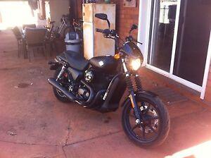 Harley Davidson Street 500 Newman East Pilbara Area Preview