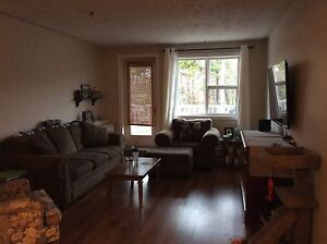 Large 3 bedroom apt in Clayton Park available Feb. 1st
