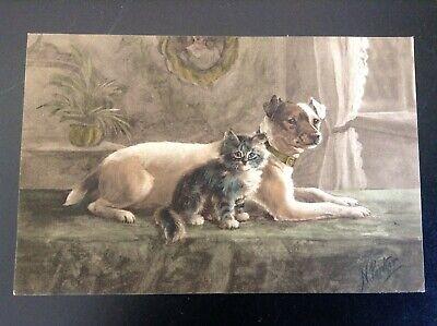 Carte postale fantaisie chat Parker