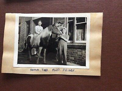 f1a ephemera photograph 1940s leicester cox's lollipop girl on horse