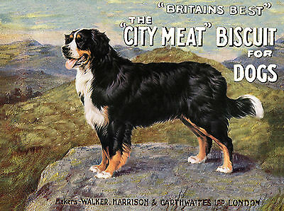 BERNESE MOUNTAIN DOG GREAT DOG FOOD ADVERT GREETINGS NOTE CARD
