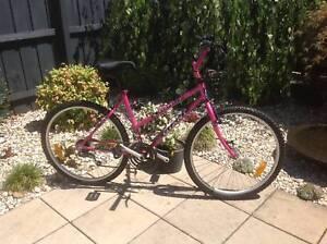 Ladies Giant Mountain bike