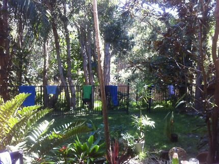 Room for rent in Byron bay Suffolk  Suffolk Park Byron Area Preview