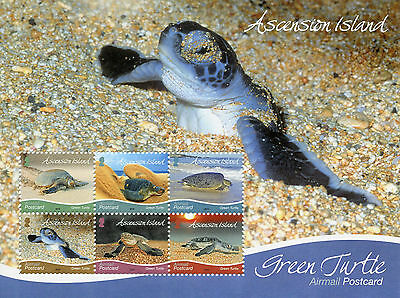 ASCENSION ISLAND 2015 MNH GREEN TURTLE AIRMAIL POSTCARD 6V M/S REPTILES TURTLES