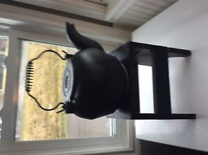 Cast. Iron. Tea. Kettle. Real old  and. Great. Condition. 20.00