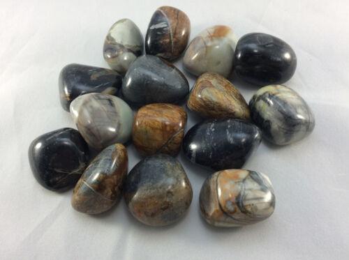 Picasso Marble Jasper Tumble Stone Specimen Pocket Crystal Healing