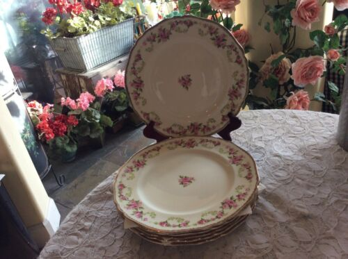 "Set Of 6 VINTAGE ALFRED MEAKIN ROSE BOWER 10"" DINNER PLATES"