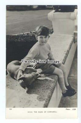 r1344 - A young Prince Charles & dog sitting on a wall - postcard