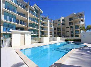 Room For Rent on the Esplanade, Bargara - ALL INCLUSIVE Bargara Bundaberg City Preview