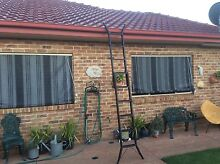 3 M.   Ext .Step Ladder& 45 .00 Narellan Vale Camden Area Preview