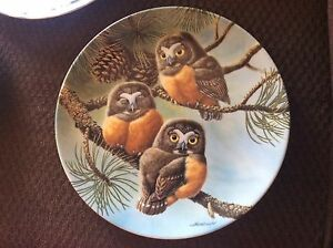 Owl plates need to sell