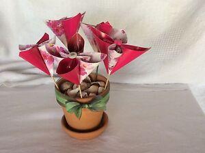 Flower pot Beenleigh Logan Area Preview