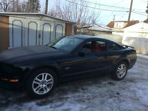 MUSTANG  GT.  ((( REDUCED ))