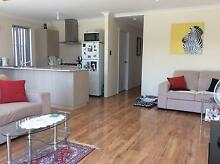 Seeking housemate with a dog :) Banksia Grove Banksia Grove Wanneroo Area Preview