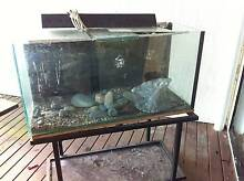 fish tank 3 foot and stand and rocks and gear Mirrabooka Lake Macquarie Area Preview