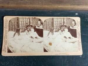 2 Stereoview Cards Underwood and Underwood