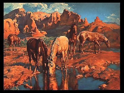 """VINTAGE 1956 """"THE WATERING HOLE"""" WILD HORSES LITHOGRAPH ART PRINT BY ADAM STYKA"""