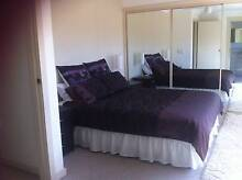 FULLY FURNISHED MAIN ROOM WITH ENSUITE East Gosford Gosford Area Preview