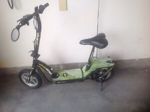 Electric scooter zip 500
