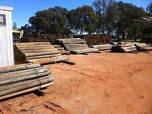 TREATED PINE-POSTS and RAILS Irwin Area Preview