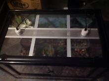 REPTILE TANK FOR SALE!! Andrews Farm Playford Area Preview