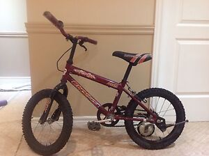 Bike for Kids good condition
