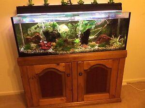 Aquarium  & cabinet Evanston Park Gawler Area Preview