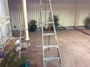 Bailey Step Ladder Good Con. $45.00 1.800 H Narellan Vale Camden Area Preview