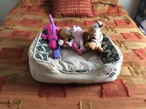 Brand new dog bed and toys