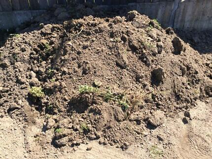 3 cubic metre of soil for free
