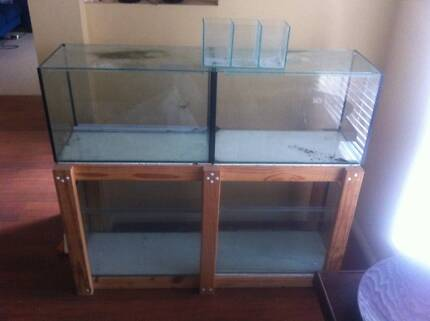 4 X 2ft Tanks,Stand,extras Strathpine Pine Rivers Area Preview