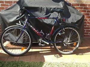 Bicycles for sale Richmond Hawkesbury Area Preview