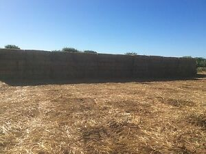 Large Oaten Hay Bales Narromine Narromine Area Preview
