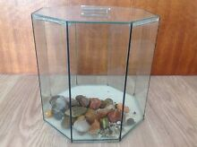 Glass Octagon Fish / Turtle Tank with Lid Mount Gambier Grant Area Preview