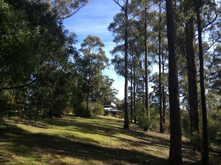 Tree change Huon Valley Preview
