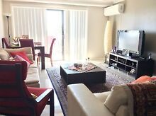 Furnished bedroom for rent Westmead Parramatta Area Preview