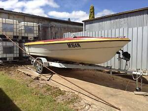 15ft Pongrass with 30hp Johnson Motor WITH TRAILER - Project Boat Young Young Area Preview