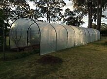 Mega Greenhouse - fully adjustable Lightweight easy to install Cabarlah Toowoomba Surrounds Preview