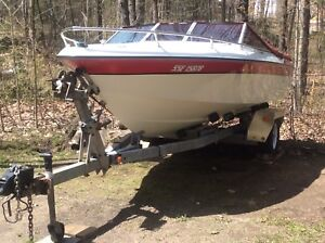 "Classic 17.5 ' Deep ""V"" Wellcraft powerboat."
