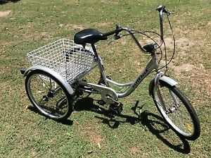 Adult tricycle- needs some work Narangba Caboolture Area Preview