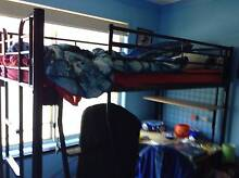 child's single bunk bed with desk attached Stanhope Gardens Blacktown Area Preview
