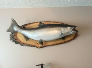 Taxidermy Fish - Salmon
