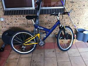 Mountain Bike- Standish Dingo, 24 speed Newton Campbelltown Area Preview