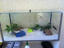 Tank set up for hermit crabs, reptiles or fish Woodlands Stirling Area Preview