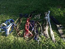 Bridles, girths, headstall with lead rope and more Bethania Logan Area Preview