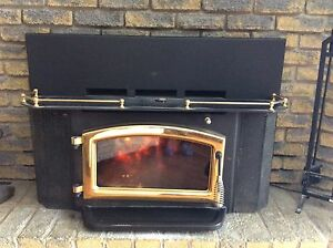 Elimira stove works insert for sale