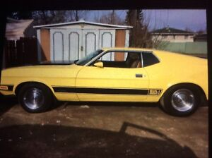 1973 mustang Mach 1.  (((. Top of the line )))