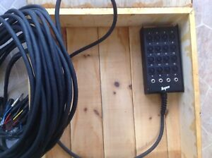 100 ft 16 channel audio snake, with custom wood carrying case